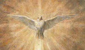72551_colombe-esprit-saint-art-velasquez